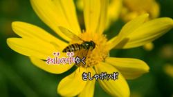 karaoke_slide01.jpg