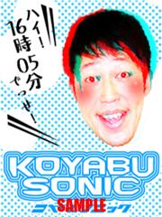 koyabu1.jpg